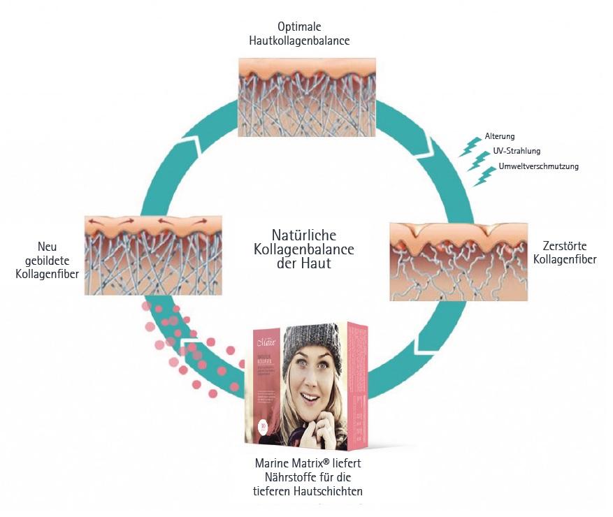 Marine Matrix - Nordic Beauty - Kollagenergänzungszusatz für natürliche Hautverjüngung